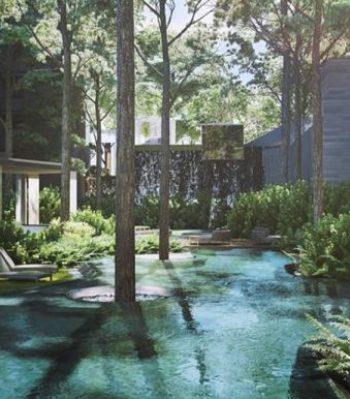 clement-landscape-clement-canopy
