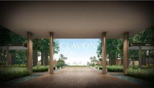 Clavon-Forest-Corridor